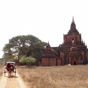 myanmar bagan pagodas horse cart ride